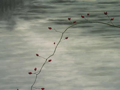 rosehips over the dart